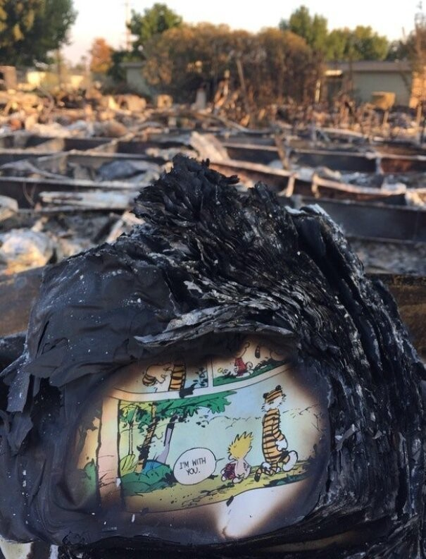 #30 A Page Of A Calvin And Hobbes Book Found In The Ashes Of Someone's House After The California Fires