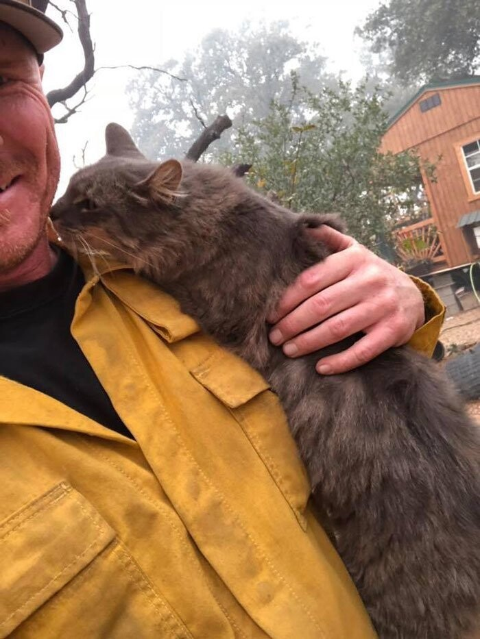 """Kitty rescue,"" he wrote on Facebook, posting its video. ""She just chilled on my neck and shoulders as I'd walk around."""