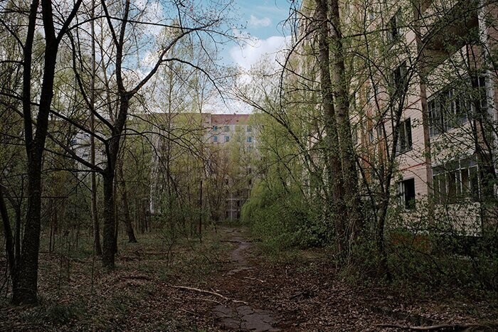 #20 Pripyat Is No Longer The Ghost Town What It Was. Now It Is Consumed By The Forest And Plants. Nature Persistently Takes It Back