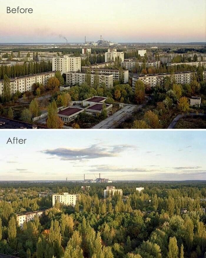#6 Nature Taking Over Pripyat. What Is The Cost Of Lies?