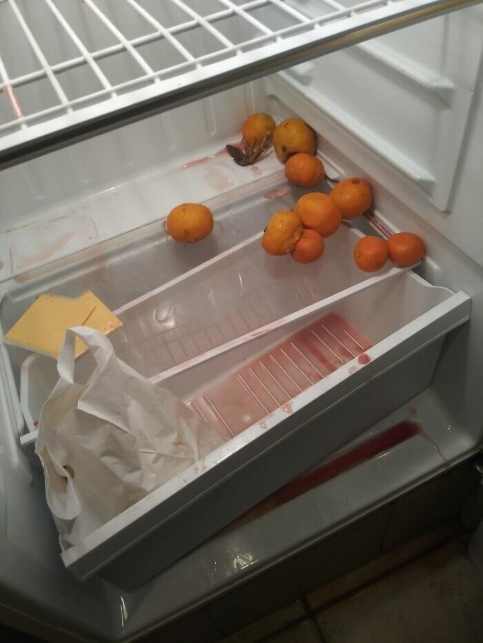 #38 I Work As A Housekeeper At A Hotel. Had To Clean This Fridge Yesterday