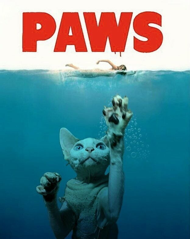 This Artist Photoshops Sphynx Cats Into Movie Posters, And It's Very Funny