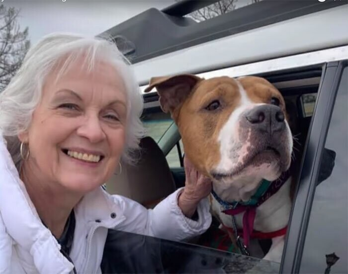 A relay of volunteers drove Zeus for 4 days across 9 states