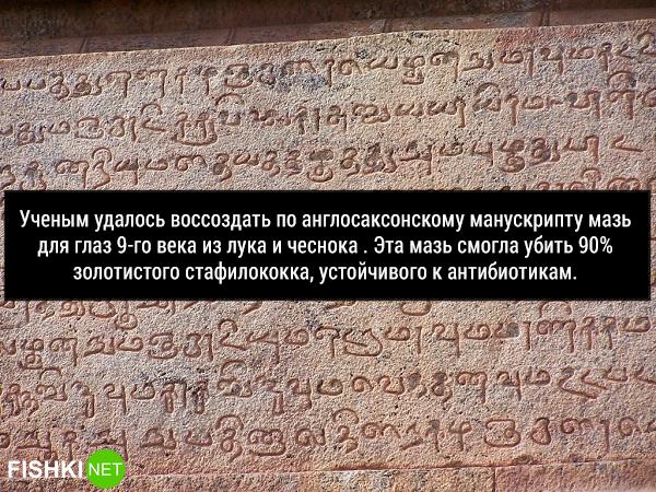 17исторических фактов, окоторых мало ктознает