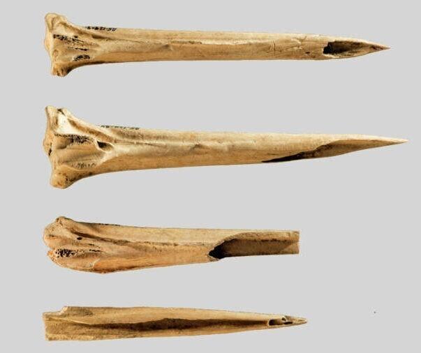 Археологи нашли древнейшие в мире тату-иглы
