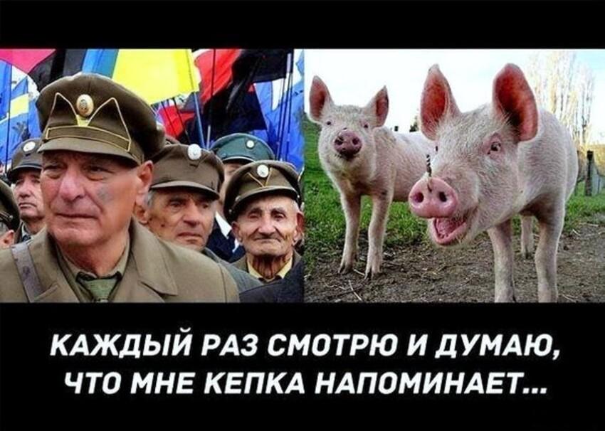 Политические картинки - 1111