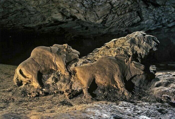 17. Скульптуры зубров, найденные в пещере Ле Тюк д'Одубер. Арьеж, Франция
